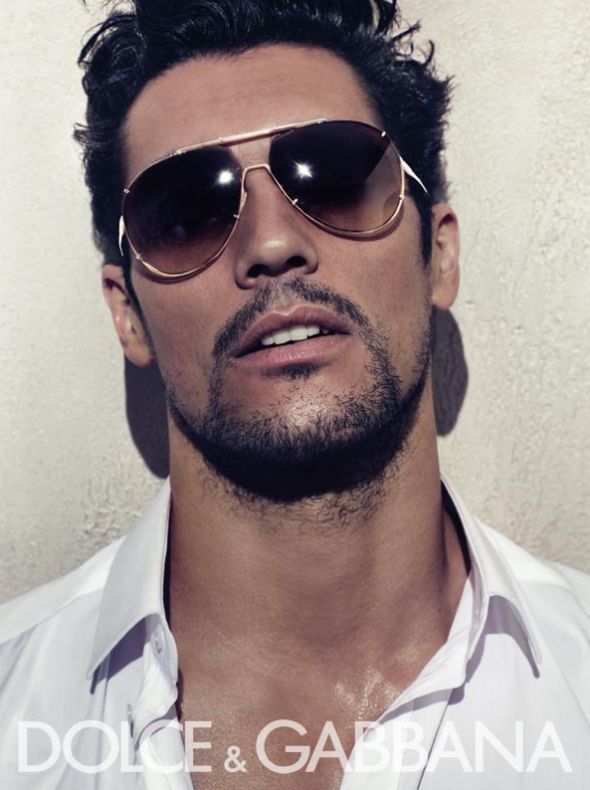 http://art8amby.files.wordpress.com/2010/01/dolce-gabbana-men-eyewear-ss-2010-david-gandy-by-steven-klein.jpg