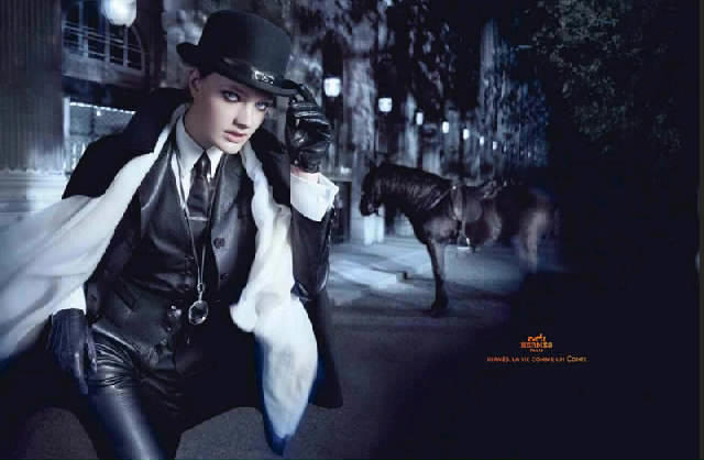71bf7578 Hermes Fall Winter 2010 Ad Campaign Pt 1 | Art8amby's Blog