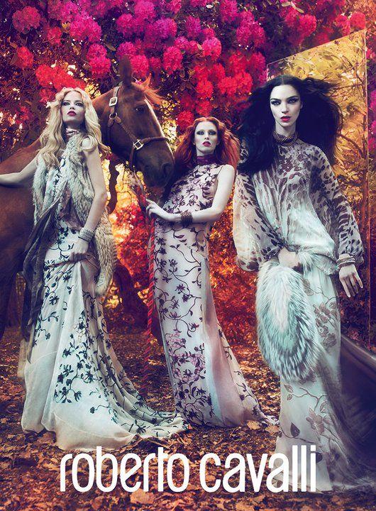 Roberto Cavalli Fall Winter 2011 Ad Campaign